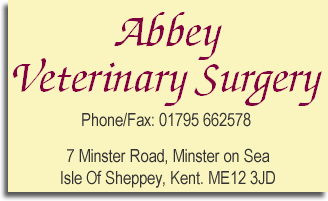 abbey vets animal hospital veterinary services kent